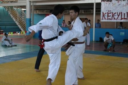 В Актау прошел Кубок Казахстана по кекушинкай карате
