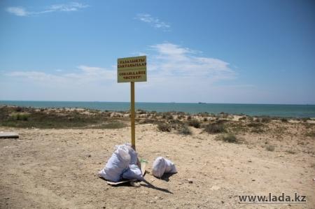 Руководитель актауского отдела ЖКХ: Мусорные контейнеры вдоль побережья моря украли