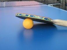 В Актау пройдет открытый городской турнир по настольному теннису, посвященный Дню спорта