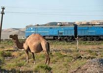 За сбыт наркотиков на станции Бейнеу задержан гражданин Узбекистана