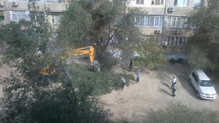 В 11 микрорайоне Актау вырубили деревья, чтобы заменить трубу