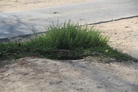 Открытый колодец, в который упала жительница Актау, принадлежит  ТОО «Кала жолдары»