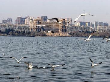 Куда уходит Каспий? Специалист о спаде уровня моря