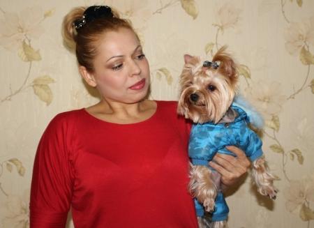 Йоркширский терьер - элегантная дамская собачка
