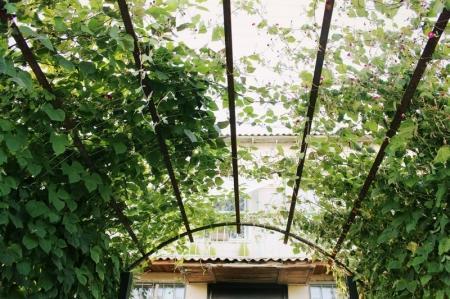 В Актау подвели итоги конкурса «Лучший двор 2014»