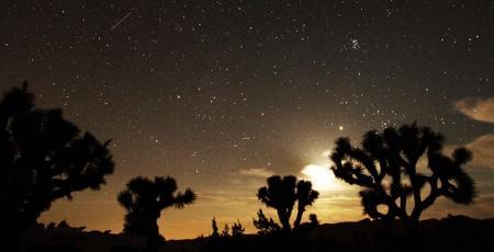 Звездопад на планете продлится до 7 ноября