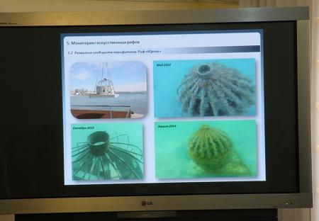 Специалисты поделились итогами исследований по установке искусственных рифов в Актау