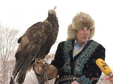 Древняя традиция охоты с ловчими птицами в Казахстане под угрозой исчезновения