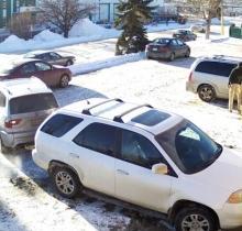Худший водитель из Канады стал звездой Youtube