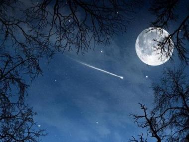 В ночь с 13 на 14 декабря жители Земли смогут наблюдать «звездопад» Геминиды