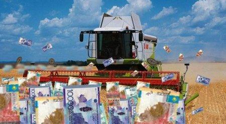 Счетный комитет заподозрил минсельхоз в помощи сомнительным фермерам