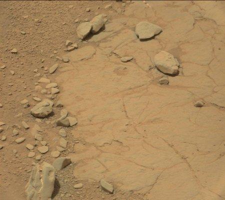 На Марсе обнаружили череп травоядного динозавра