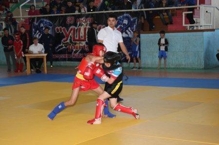 Более 300 спортсменов участвуют в чемпионате Казахстана по ушу