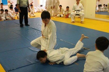 Более пятидесяти спортсменов стали участниками областного турнира по айки каратэ