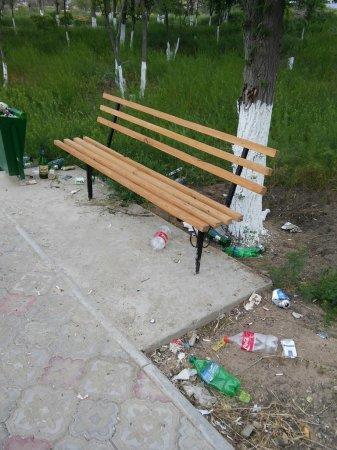 Как ведут себя люди в парке