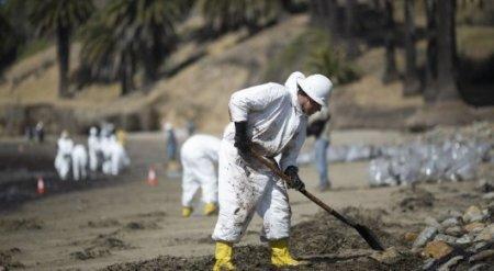 В Калифорнии объявлено чрезвычайное положение из-за разлива нефти