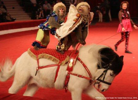 Спешите! Незабываемое шоу, покорившее казахстанского зрителя, едет в Актау!