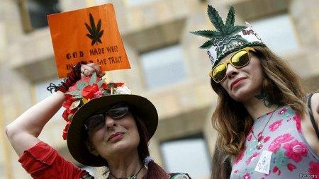 В Грузии призывают к декриминализации марихуаны