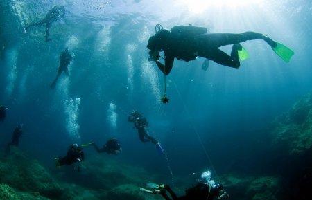 В Египте 600 аквалангистов установили мировой рекорд по очистке морского дна от мусора