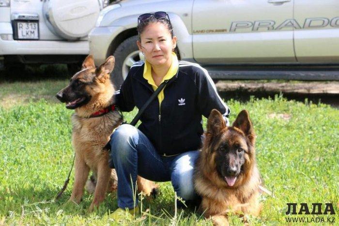 Питомцы актауских собаководов вернулись с международной выставки с шестью наградами
