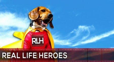 Пес из Караганды вошел в мировой рейтинг собак-героев
