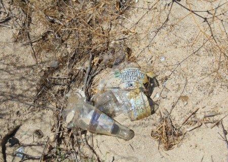 На теплом пляже Актау появились неизвестные предприниматели