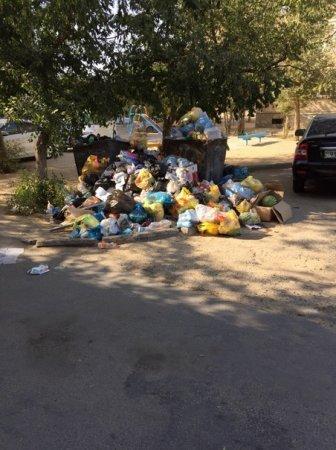 В 12 микрорайоне три дня не убирают мусор