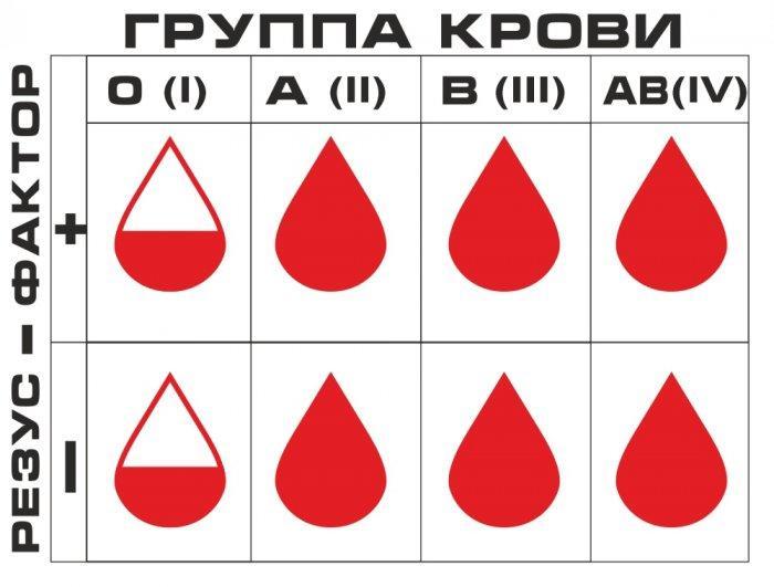 Знай свою группу крови