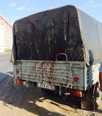 В Уральске собаку застрелили на глазах у десятка людей