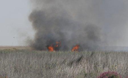 В пригороде Актау загорелся камыш на озере Караколь
