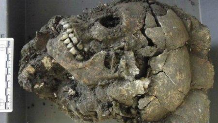 """В Китае найдены 68 черепов с """"третьим глазом"""""""