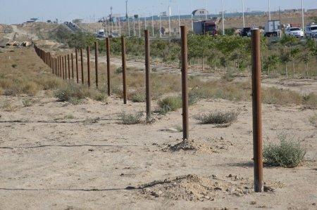 Началось строительство ограждения от скота на участке трассы Актау-аэропорт