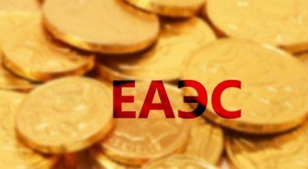 В ЕАЭС не планируют поднимать вопрос о переходе на единую валюту