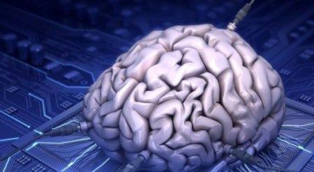 Искусственный интеллект не смог справиться с детским тестом на IQ