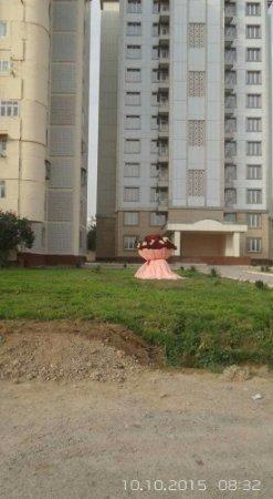 """Житель Ташкента подарил возлюбленной букет из """"миллиона роз"""""""
