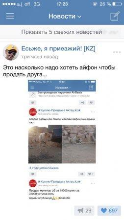 Житель Актау обменял свою собаку на iPhone