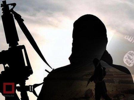 Названы причины признания ИГ (ДАИШ) террористической организацией в Казахстане