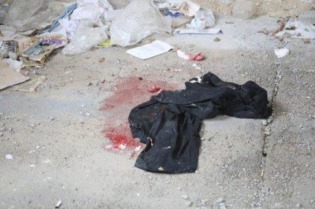В Актау бомжи убивали собак на глазах у детей