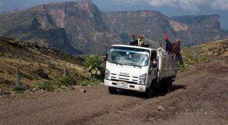 Казахстан оказался на одном уровне с Африкой по смертности на дорогах