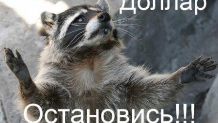 Казахстанцы начали травить байки про тенге и доллар