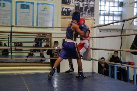 Названы победители турнира Мангистауской области по боксу
