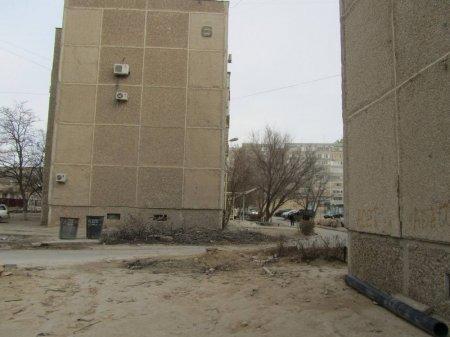 Жители 13 микрорайона возмущены уничтожением деревьев