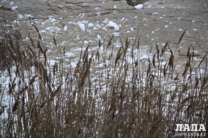 Зимний Каспий. Фотопост
