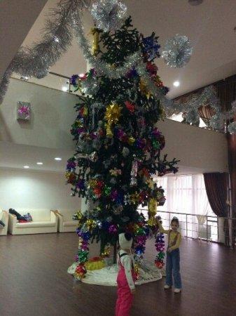 Журналисту «Лады» запретили сфотографировать новогоднюю елку в КДК имени Абая