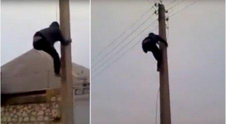 Человек-паук из Шымкента покоряет электрические столбы
