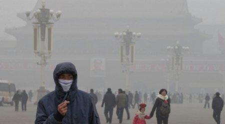 5,5 миллиона человек ежегодно умирают из-за загрязнения воздуха