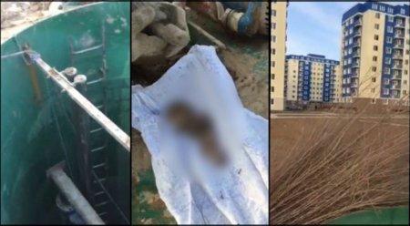 О найденном теле недоношенного ребенка в канализационной трубе рассказали в ДВД ЮКО
