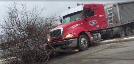 Лабрадор за рулем грузовика попал в ДТП в Миннесоте