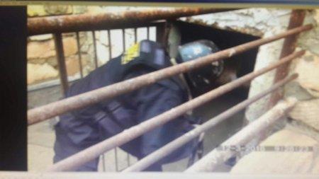 Марихуану почти на десять миллионов тенге обнаружили полицейские в будке для собаки в Мангистау