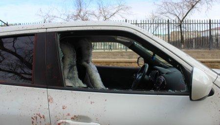 Разбивший оба передних боковых стекла автомобиля в центре Актау ничего не похитил из машины